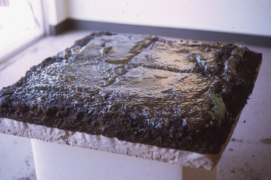 gelatin dirt earth conceptual art